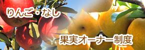 りんご・なし果実オーナー制度