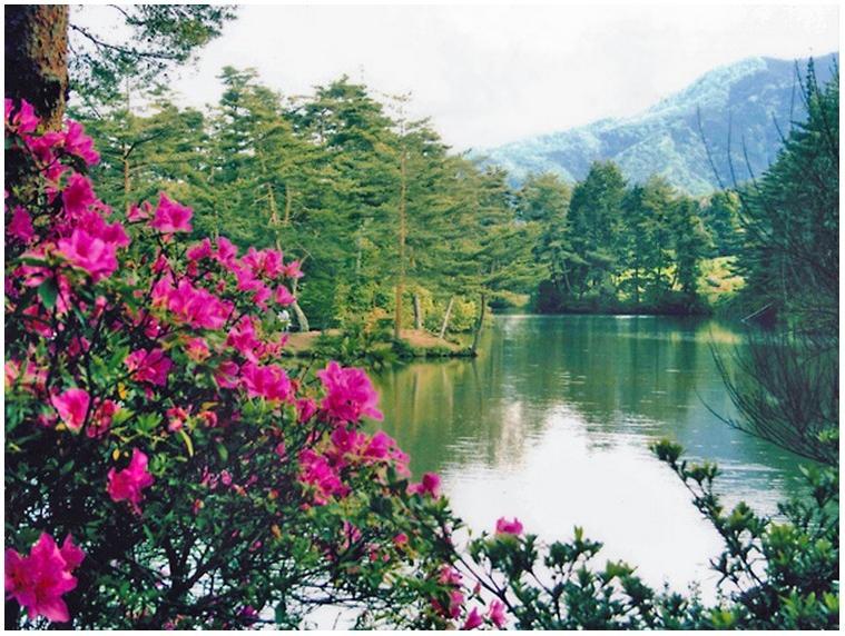 おおぐて湖畔 しらさぎ荘