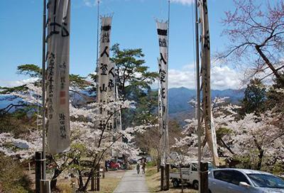 入登山神社桜