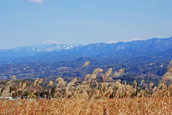 今月の風景 2013年12月