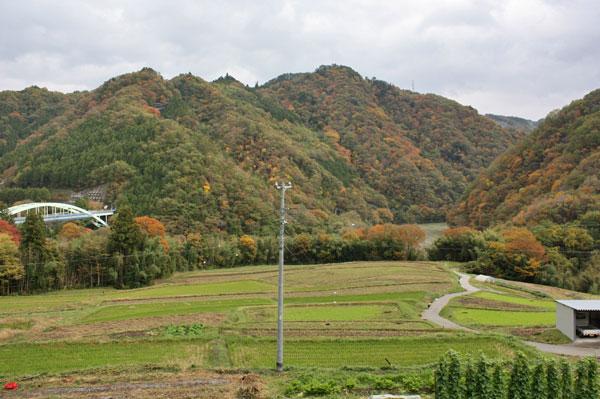 2013紅葉