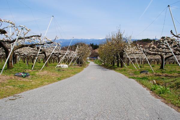 今月の風景 2016年5月