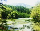 oogute lake